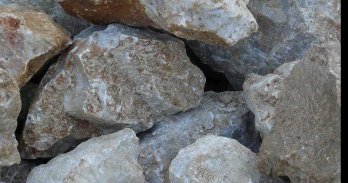 Des biologistes ont trouvé de la vie chez les minéraux : les pierres sont vivantes !
