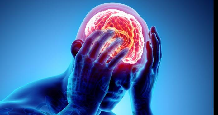 Une moitié de cerveau disponible pour un jeune Lyonnais
