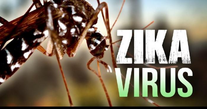 Zika en france: Décès d'un nourrisson atteint de microcéphalie